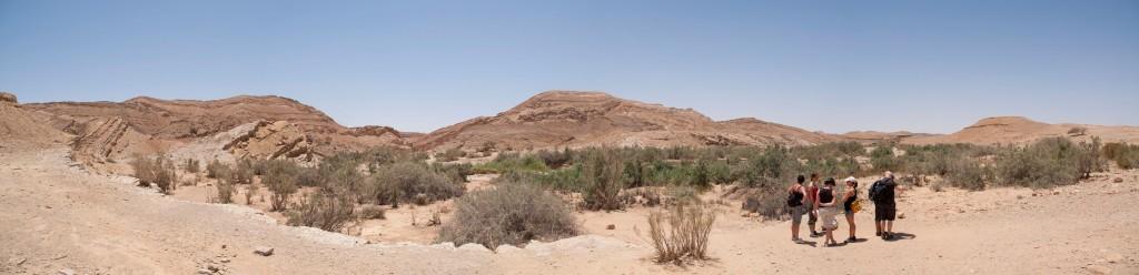 Israël 2010